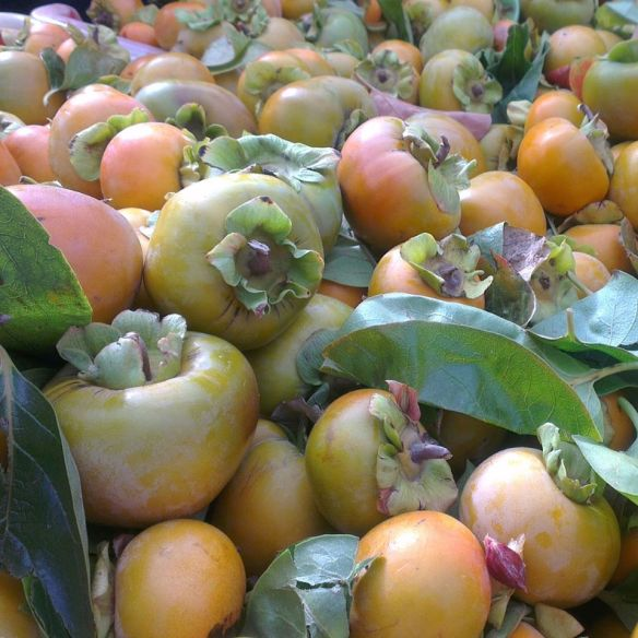 Persimmons for sale at Jamison Trash n Treasure markets