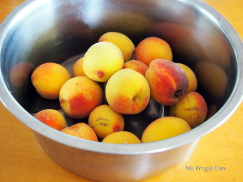 A metal bowl of homegrown peaches